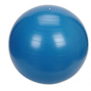 Bodyworx fitball